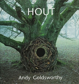 Hout by Andy Goldsworthy